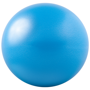 GoFit 20cm Core Ab Ball 健身球 (pcs) GF-20BALL