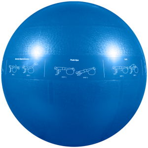GoFit Guide Ball 專業健身球 (pcs) GF-55PRO GF-65PRO